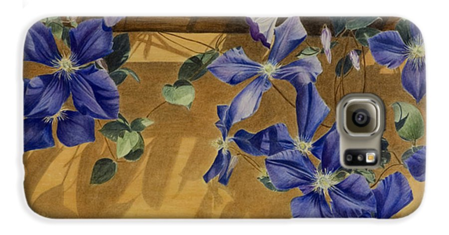 Clematis Galaxy S6 Case featuring the painting Shadows Dancing by Nik Helbig