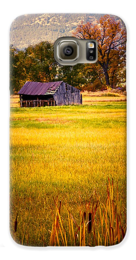 Shed Galaxy S6 Case featuring the photograph Shed In Sunlight by Marilyn Hunt
