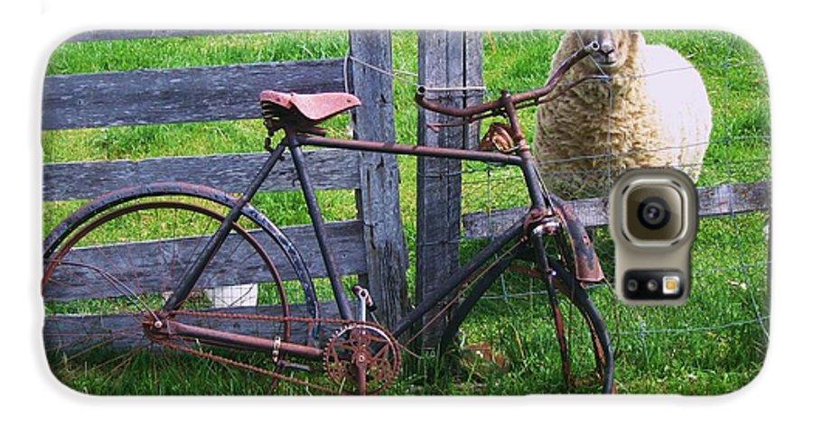 Photograph Sheep Bicycle Fence Grass Galaxy S6 Case featuring the photograph Sheep And Bicycle by Seon-Jeong Kim