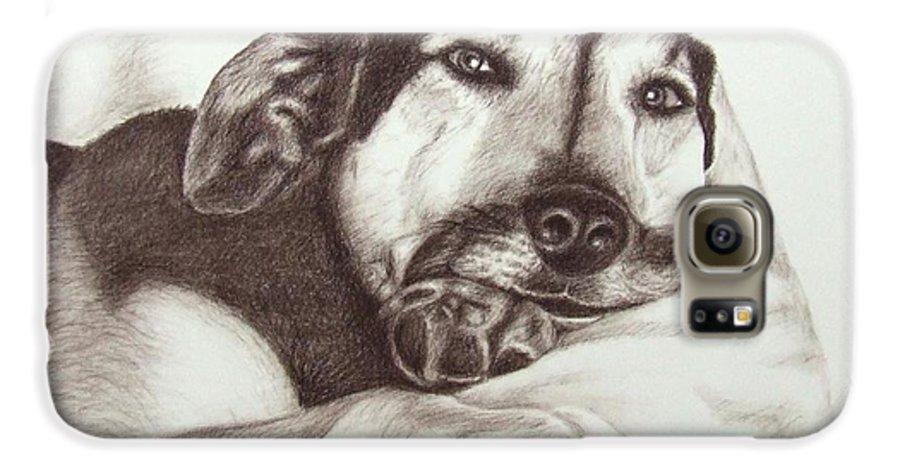 Dog Galaxy S6 Case featuring the drawing Shepherd Dog Frieda by Nicole Zeug