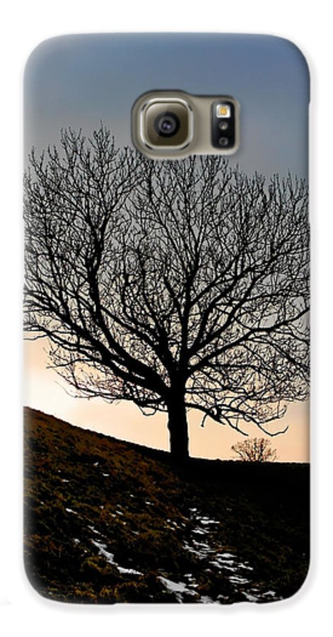 Tree Galaxy S6 Case featuring the photograph Silhouette Of A Tree On A Winter Day by Christine Till