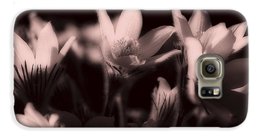 Flowers Galaxy S6 Case featuring the photograph Sleepy Flowers 2 by Marilyn Hunt