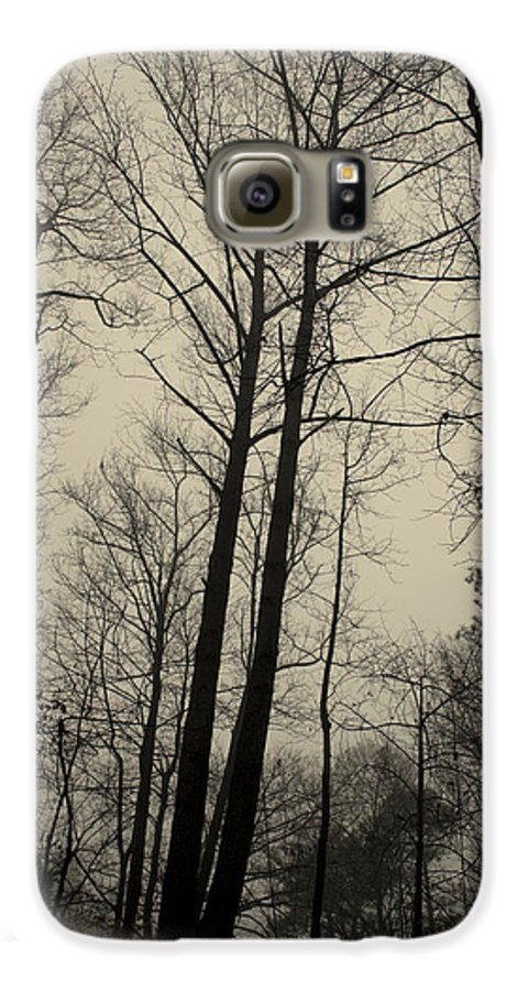 Trees Galaxy S6 Case featuring the photograph Standing Tall by Ayesha Lakes