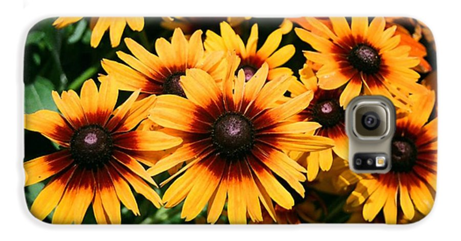 Sunflowers Galaxy S6 Case featuring the photograph Sunflowers by Dean Triolo