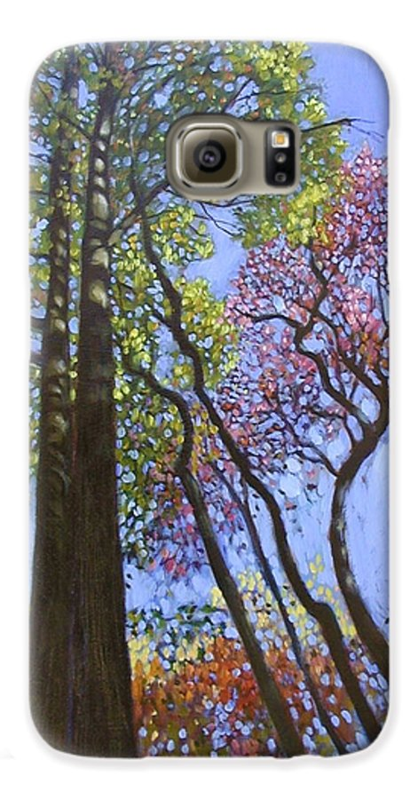 Fall Trees Highlighted By The Sun Galaxy S6 Case featuring the painting Sunlight On Upper Branches by John Lautermilch