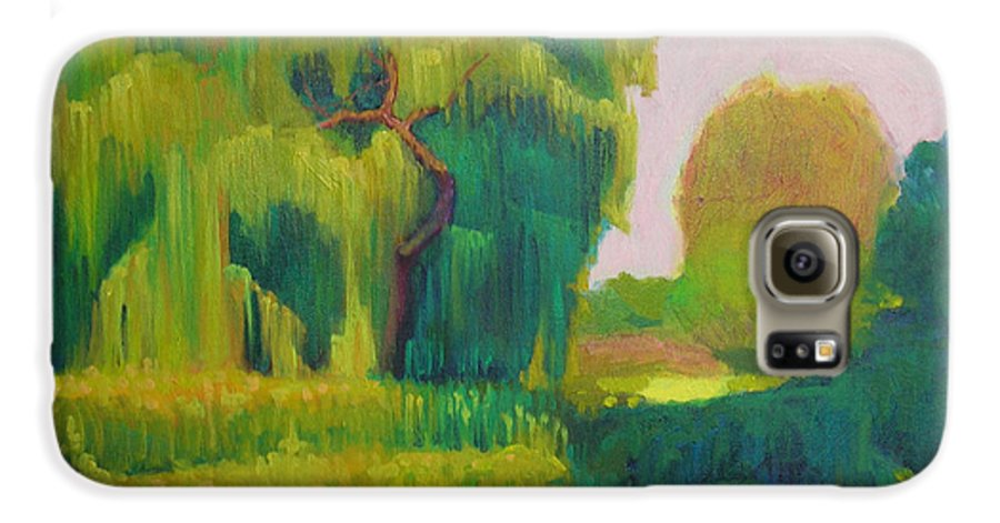 Landscape Galaxy S6 Case featuring the painting Sunny Day Indian Boundary Park by David Dozier
