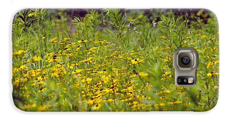 Nature Galaxy S6 Case featuring the photograph Susans In A Green Field by Randy Oberg