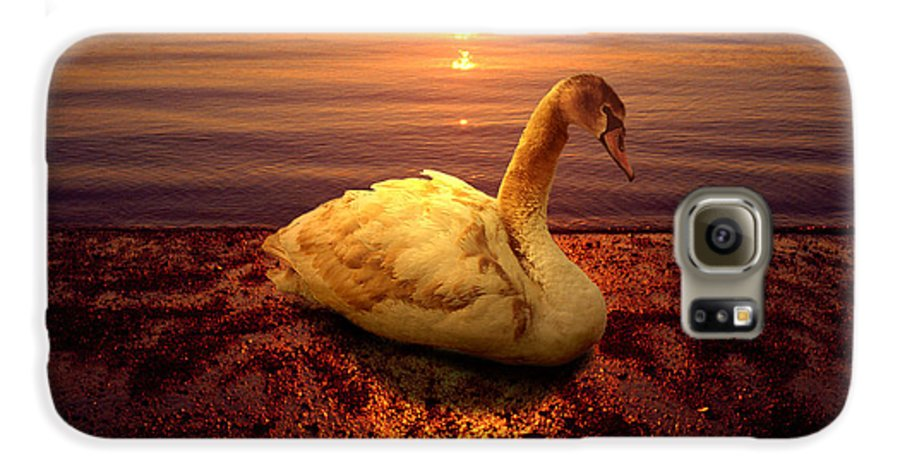 Animal Galaxy S6 Case featuring the photograph Swan Lake by Yuri Lev