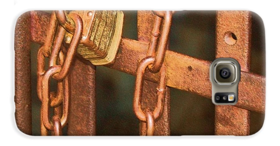 Metal Galaxy S6 Case featuring the photograph Tarnished Image by Debbi Granruth