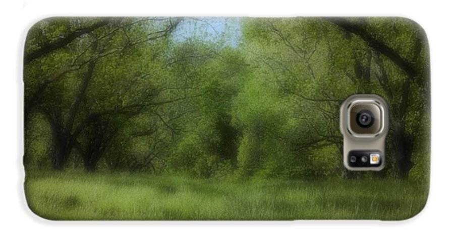 Landscape Galaxy S6 Case featuring the photograph The Meadow by Ayesha Lakes