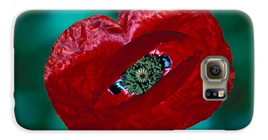 Bright; Red; Green; Brilliant; Flower; Flora; Close-up; Eye; Nature; Opium; Sleep; Death; Hypnotic; Magic; Wizard; Dorothy; France Galaxy S6 Case featuring the photograph The Opiate Of Desire by Carl Purcell