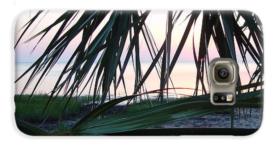 Palms Galaxy S6 Case featuring the painting The Peeking Palms by Debbie May