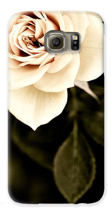 Rose Galaxy S6 Case featuring the photograph The Softest Rose by Marilyn Hunt