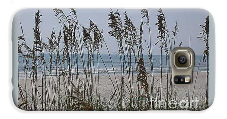 Florida Beach Near St. Augustine Galaxy S6 Case featuring the photograph Thru The Sea Oats by Barb Montanye Meseroll