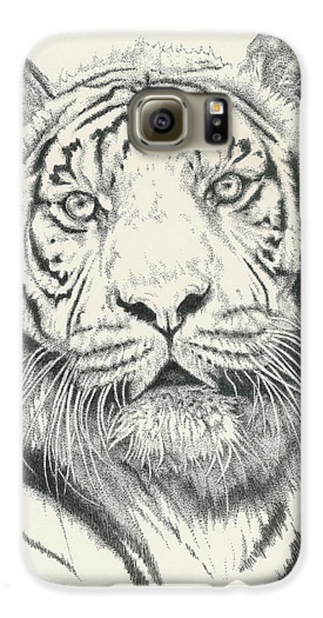Tiger Galaxy S6 Case featuring the drawing Tigerlily by Barbara Keith