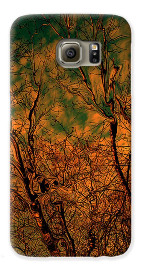 Trees Galaxy S6 Case featuring the photograph Tree Abstract by Linda Sannuti