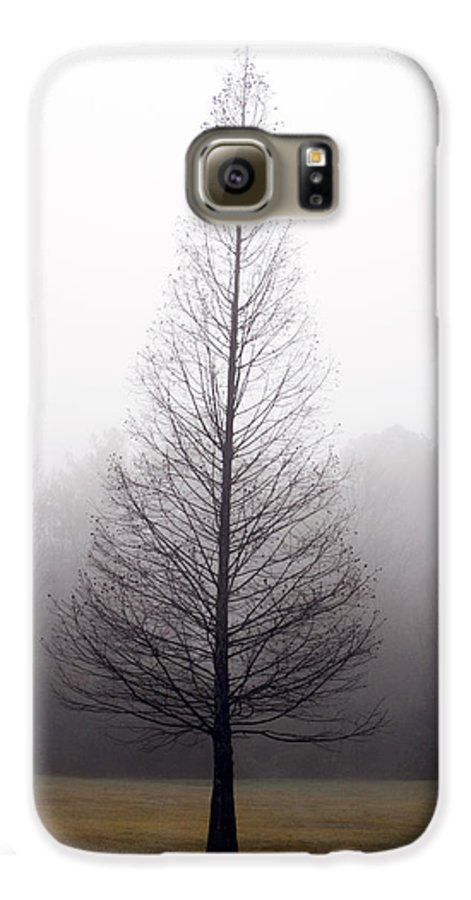 Scenic Galaxy S6 Case featuring the photograph Tree In Fog by Ayesha Lakes