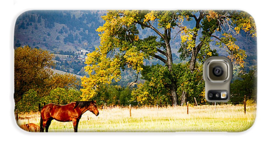 Animal Galaxy S6 Case featuring the photograph Two Horses by Marilyn Hunt