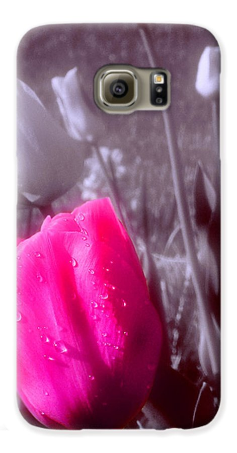 Flower Galaxy S6 Case featuring the photograph Uniqueness by Kenneth Krolikowski