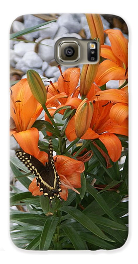 Flower Galaxy S6 Case featuring the photograph Untitled by Debbie May