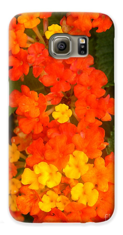 Nature Galaxy S6 Case featuring the photograph Volcanic Display by Lucyna A M Green