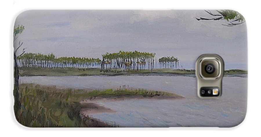 Landscape Beach Coast Tree Water Galaxy S6 Case featuring the painting Water Color by Patricia Caldwell