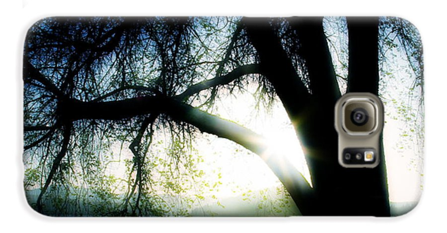 Weesping Galaxy S6 Case featuring the photograph Weeping by Idaho Scenic Images Linda Lantzy