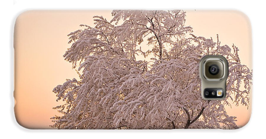 Winter Galaxy S6 Case featuring the photograph Winter Sunset by Marilyn Hunt