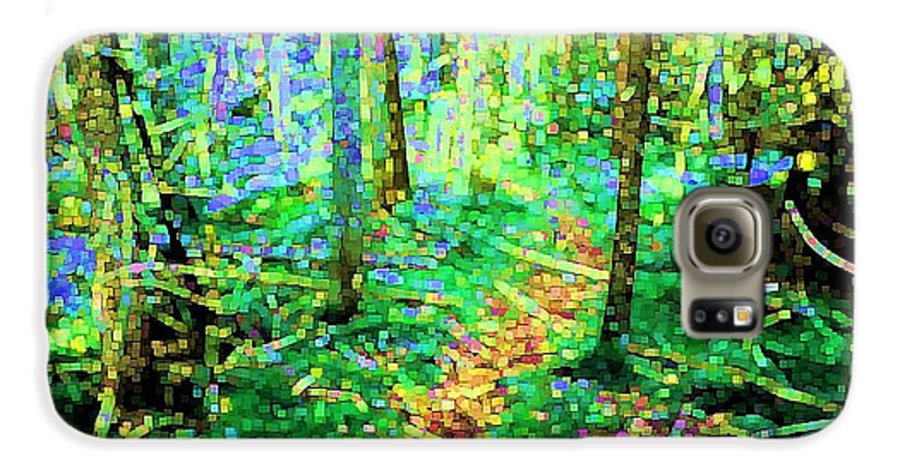 Nature Galaxy S6 Case featuring the digital art Wooded Trail by Dave Martsolf