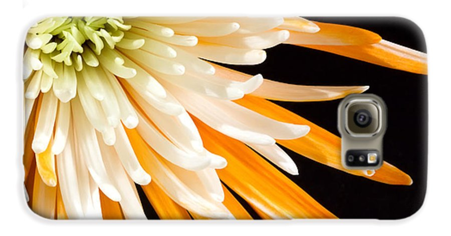Flower Galaxy S6 Case featuring the photograph Yellow Flower On Black by Al Mueller