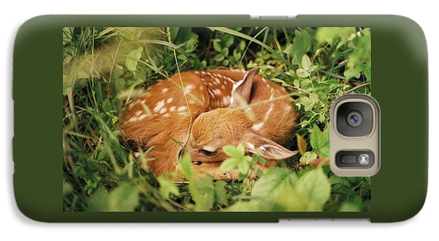 Deer Galaxy S7 Case featuring the photograph 080806-17 by Mike Davis