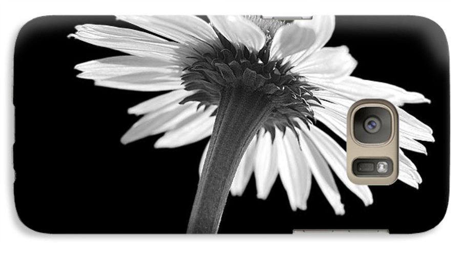 Echinacea Galaxy S7 Case featuring the photograph Coneflower by Tony Cordoza