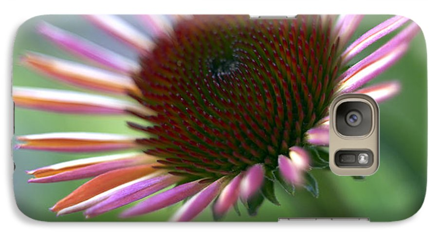 Genus Echinacea Galaxy S7 Case featuring the photograph Coneflower by Tony Cordoza