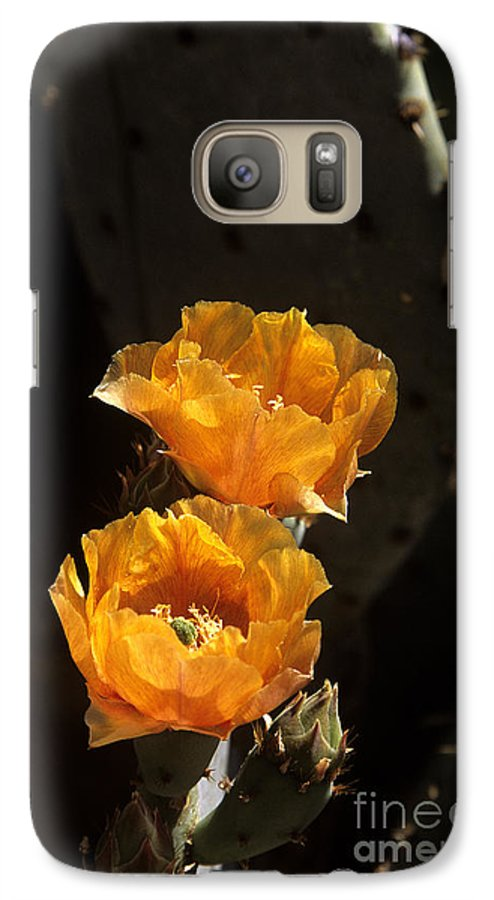 Cactus Galaxy S7 Case featuring the photograph Apricot Blossoms by Kathy McClure