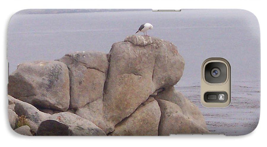 Bird Galaxy S7 Case featuring the photograph Bird On A Rock by Pharris Art