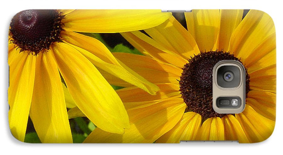 Black Eyed Susan Galaxy S7 Case featuring the photograph Black-eyed Susans Close Up by Suzanne Gaff