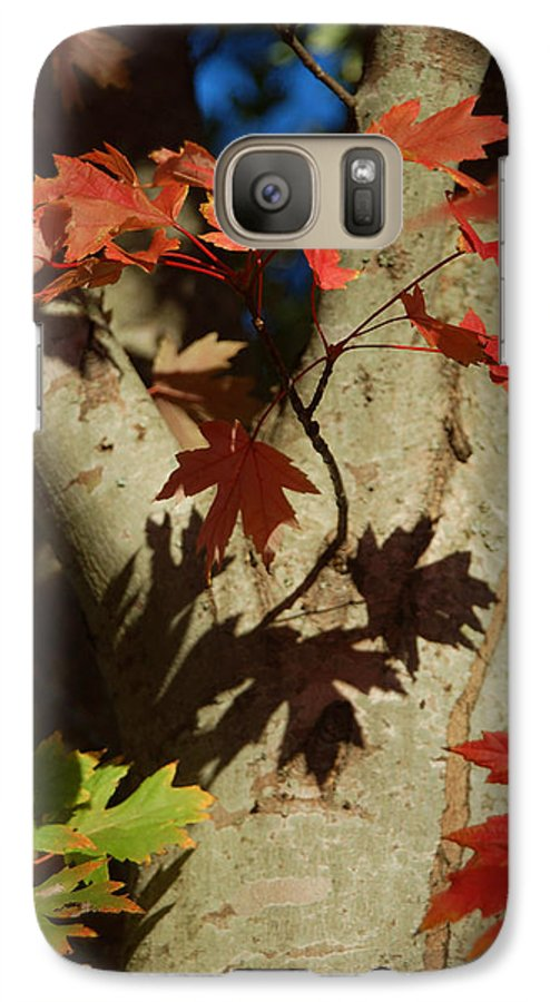 Autumn Galaxy S7 Case featuring the photograph Carolina Autumn by Suzanne Gaff