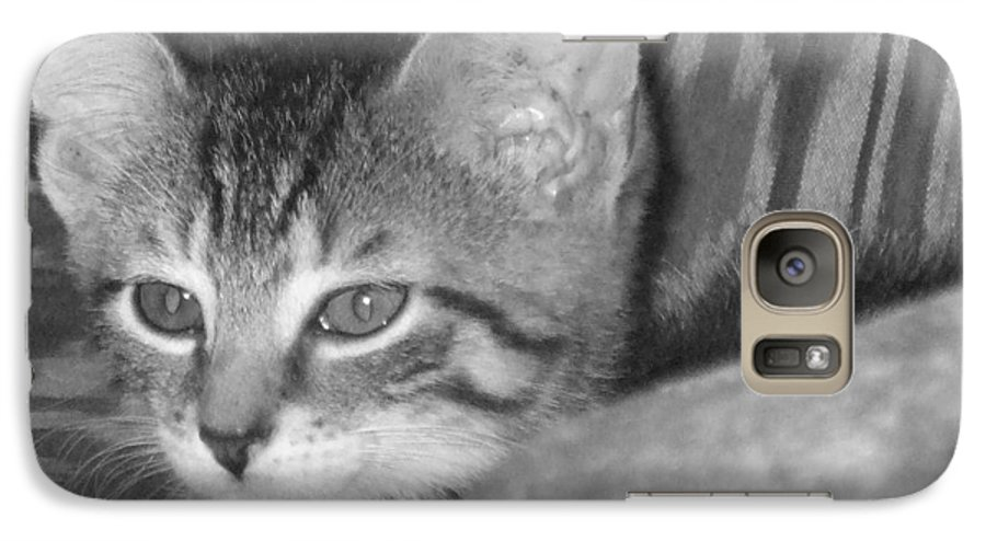 Kitten Galaxy S7 Case featuring the photograph Comfy Kitten by Pharris Art