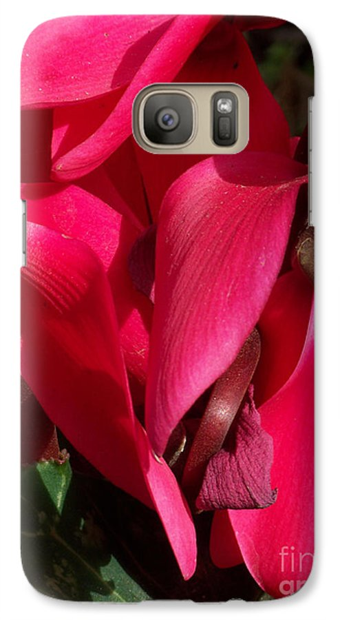 Flowers Galaxy S7 Case featuring the photograph Cyclamen by Kathy McClure
