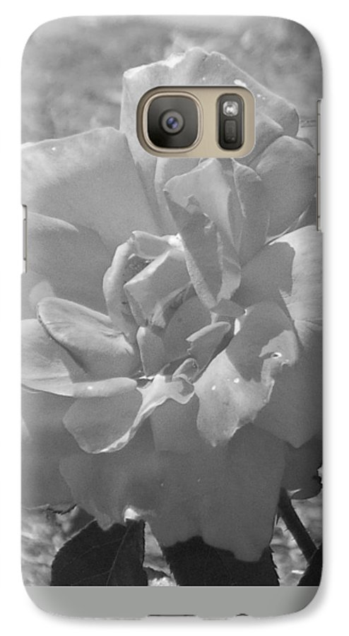 Rose Galaxy S7 Case featuring the photograph Dew Rose by Pharris Art