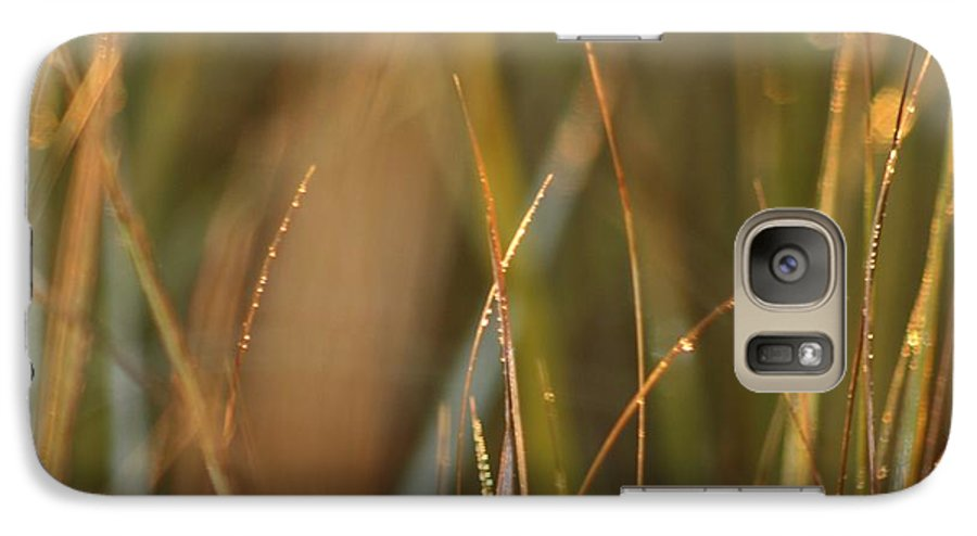 Dew Galaxy S7 Case featuring the photograph Dewy Grasses by Nadine Rippelmeyer