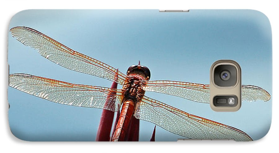 Dragonfly Galaxy S7 Case featuring the photograph Dragonfly Days by Suzanne Gaff