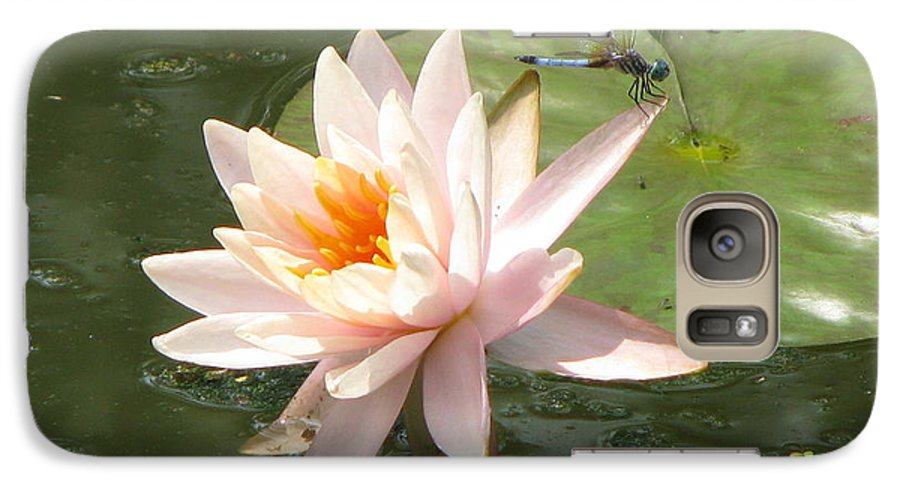 Dragon Fly Galaxy S7 Case featuring the photograph Dragonfly Landing by Amanda Barcon