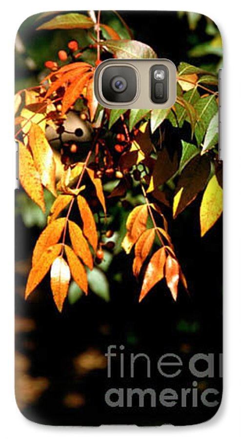 Fall Color Galaxy S7 Case featuring the photograph Fall Leaves by Kathy McClure