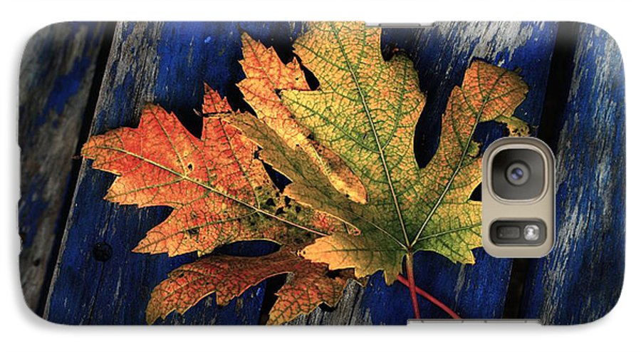 Nature Galaxy S7 Case featuring the photograph Falling For Colour by Linda Sannuti