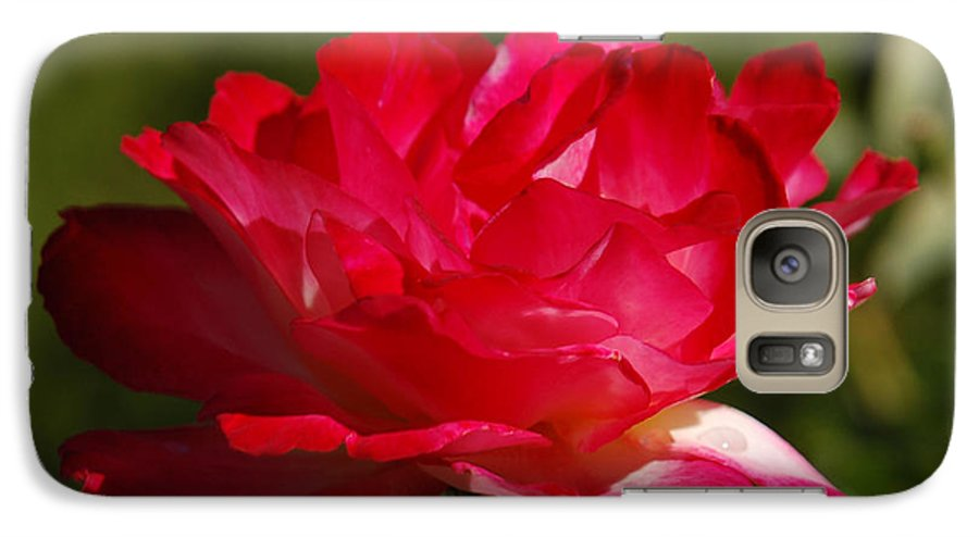 Floral Galaxy S7 Case featuring the photograph Fuchsia by Suzanne Gaff