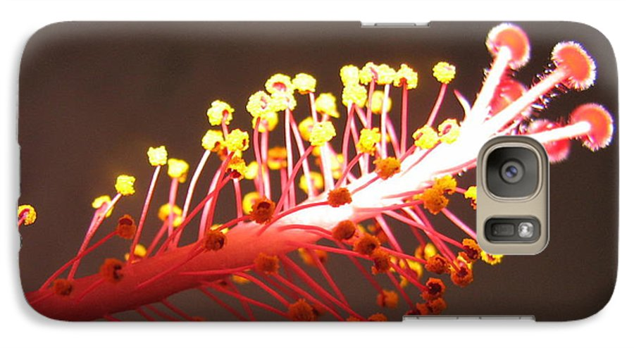 Hibiscus Galaxy S7 Case featuring the photograph Hibiscus by Mary Ellen Mueller Legault