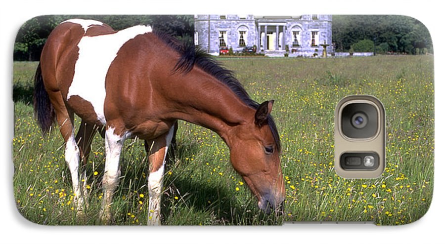 Horse Galaxy S7 Case featuring the photograph Horse Grazes Near St. Clerans by Carl Purcell