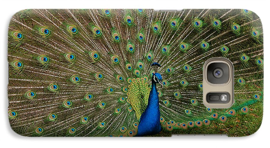 Peacock Galaxy S7 Case featuring the photograph Its All About Him by Suzanne Gaff