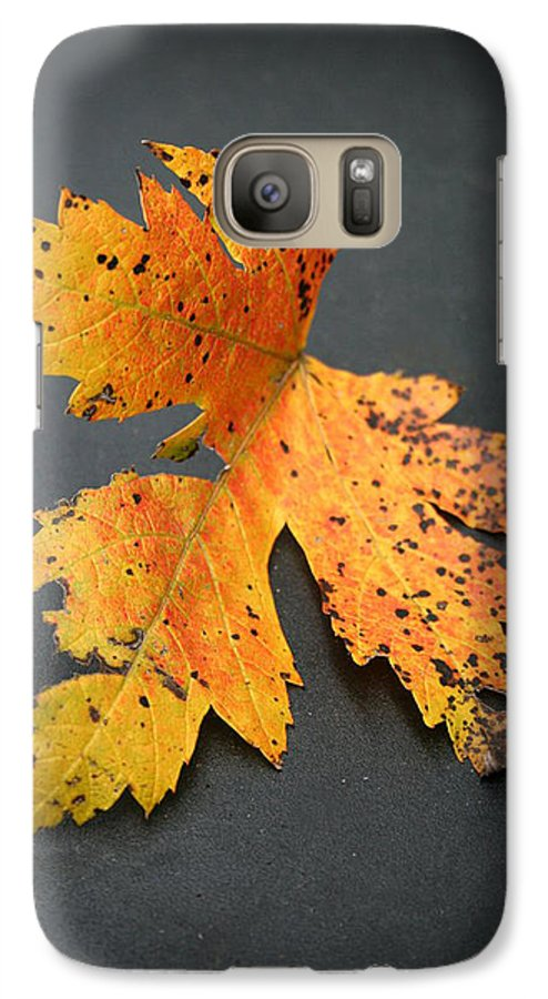 Nature Galaxy S7 Case featuring the photograph Leaf Portrait by Linda Sannuti
